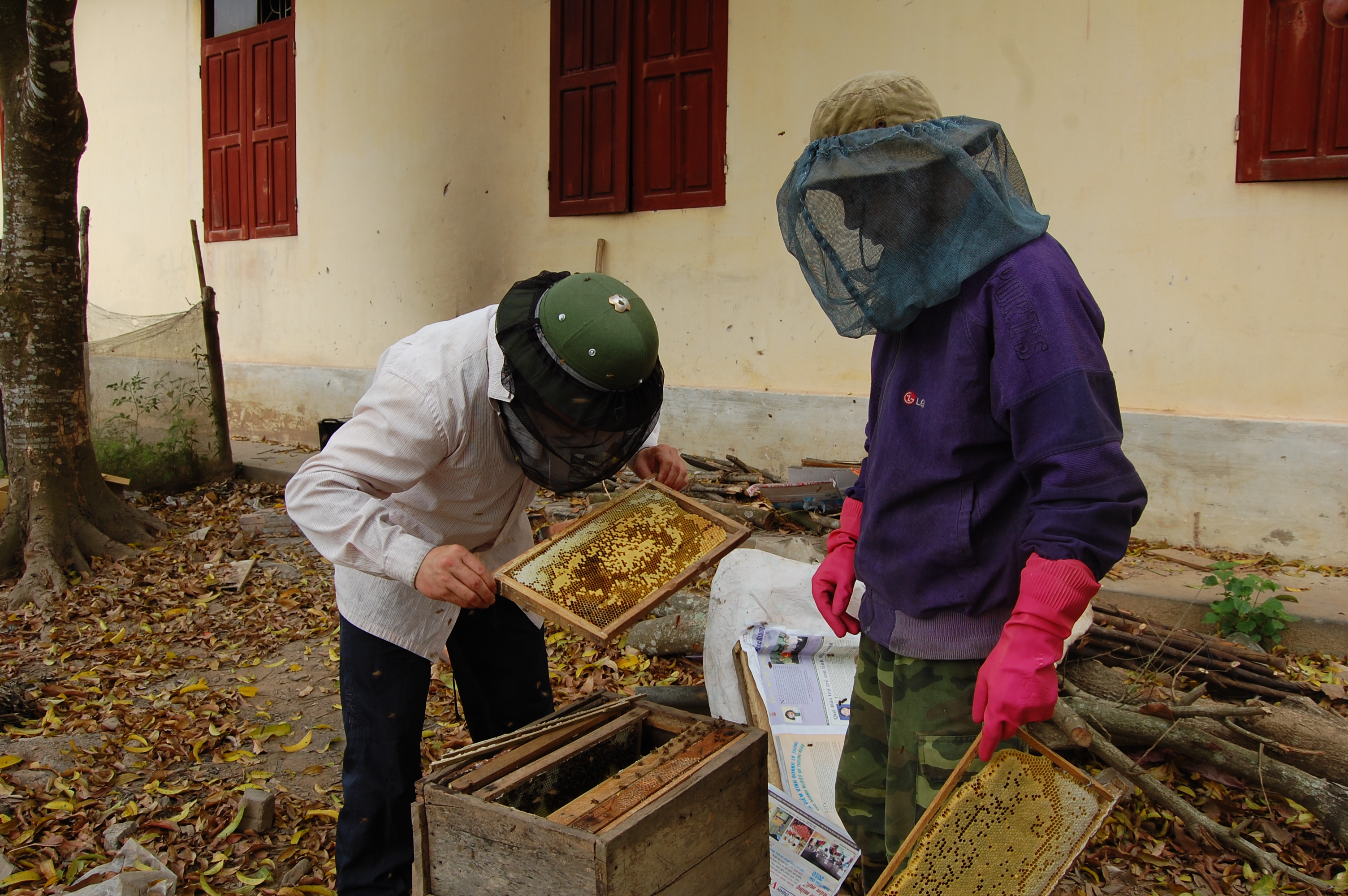Bee keepers at work.