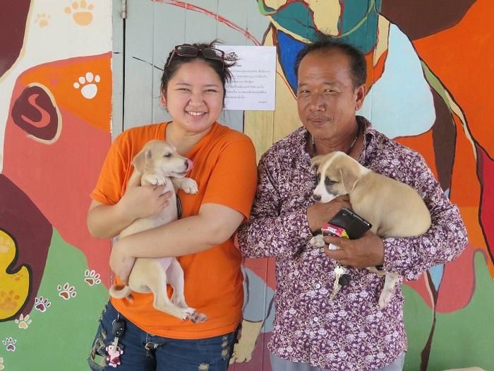 thai couple adopts puppies