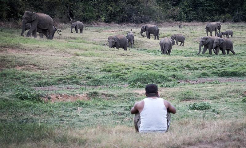 "Updates on Greenheart Travel's ""Give Back"" Award in Sri Lanka"