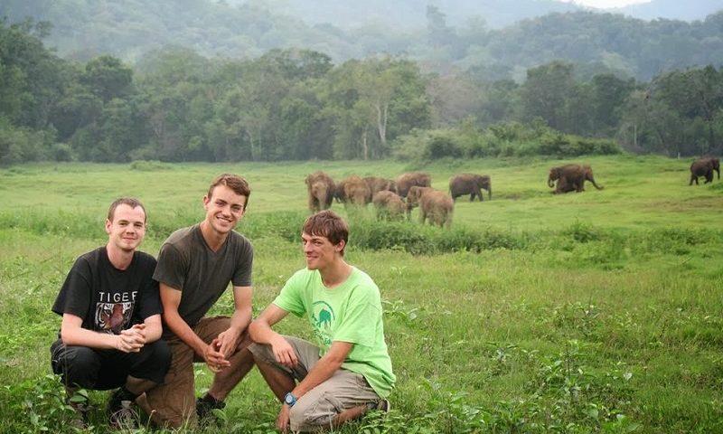 14 Photos of Elephants to Celebrate World Elephant Day