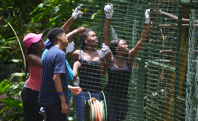Volunteers holding up part of a cage in Costa Rica.