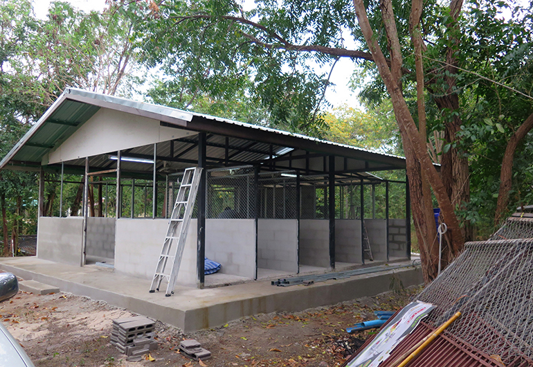 A side view of the kennel under construction.