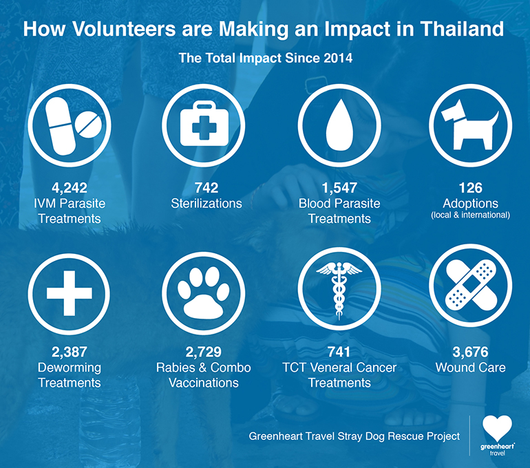 How volunteers have made an impact in Thailand since 2014 infographic.