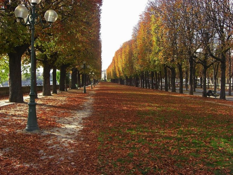 8 Reasons to Teach in a Homestay in Europe in the Fall