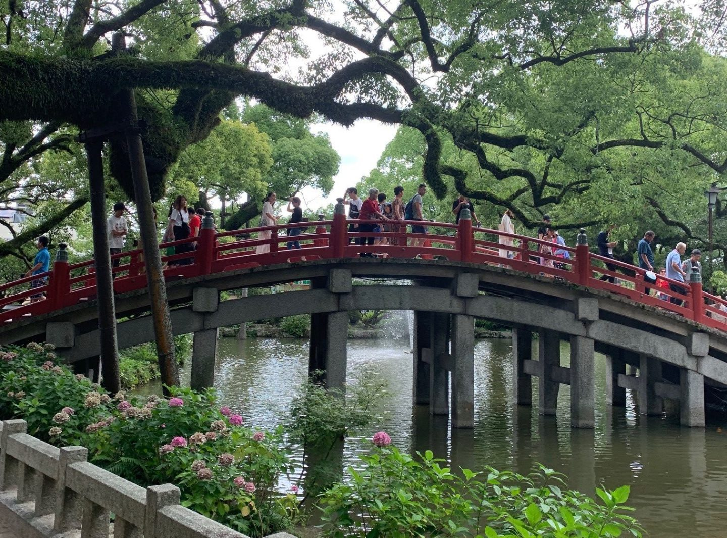 Taking the Leap: A First Time Traveler's Experience in Japan